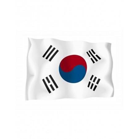 Bandiera COREA