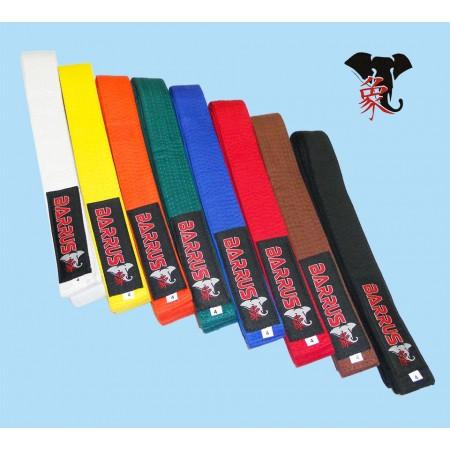 Cintura colorata BARRUS